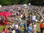 RFU STRAWBERRY HILL MUSIC & FUN DAY