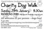 DogWalk info