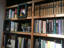 Oxted bookcase