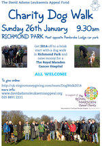 david adams charity dog walk 2014