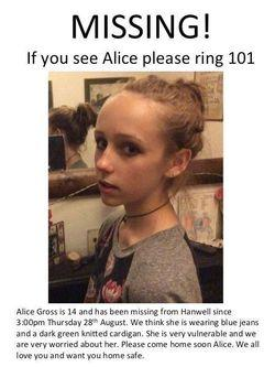 find alice poster