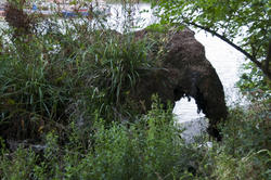 Elephant by Thames
