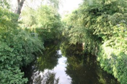 Image - 2011_river_crane-from-moormead