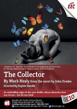 Image - TTC_The-Collector-flyer