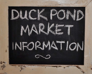Duck_Pond_Market